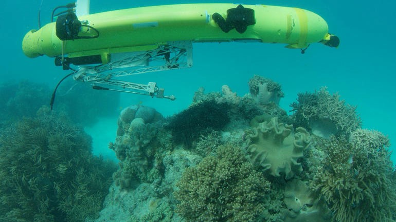 Autonomous underwater vehicles identify and kill invasive starfish at the Great Barrier Reef in Australia. (Image: QUT)