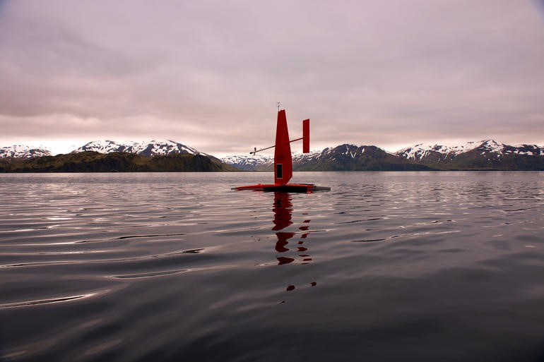 An autonomous sail boat collects ocean data in the Dutch Harbor, AK. (Image: Saildrone)