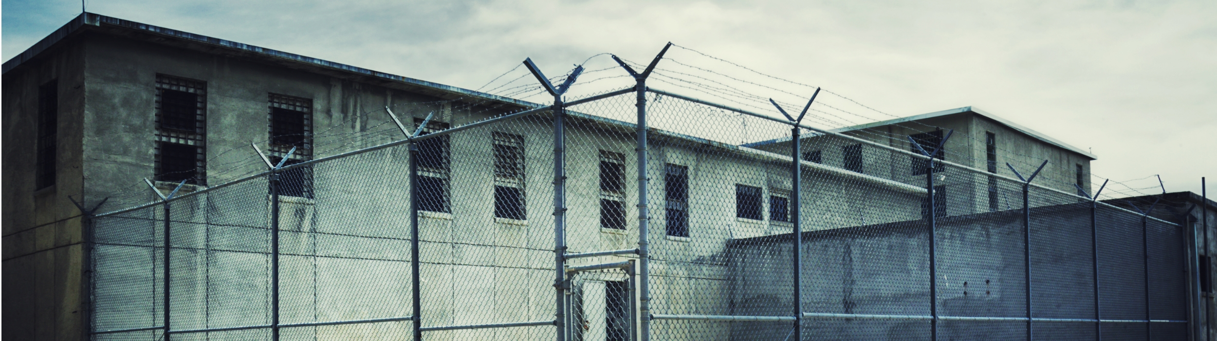 Opgal Prison Surveillance Solutions