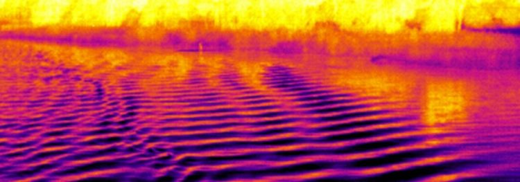 Wake on the River in thermal vision
